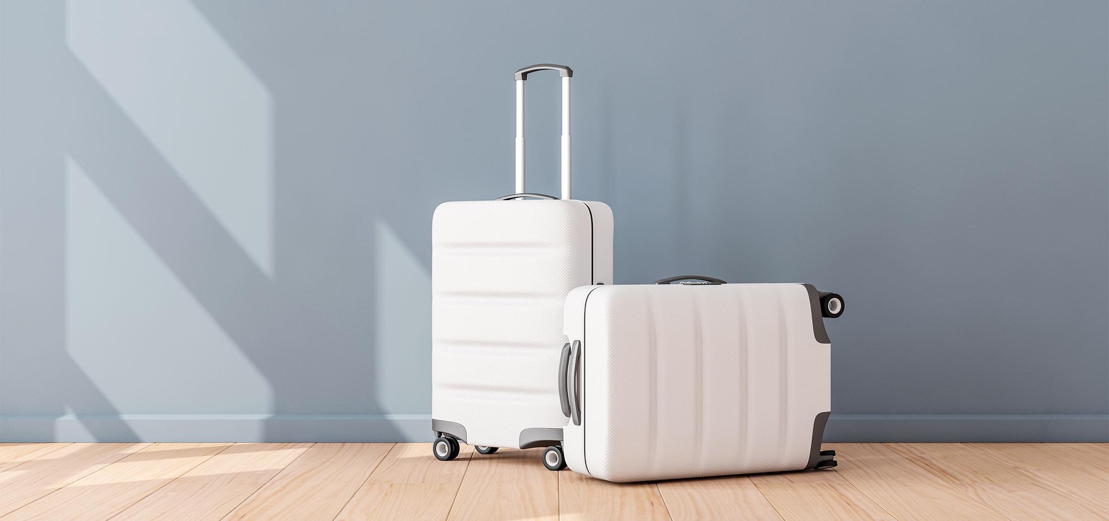 ind_full_luggage