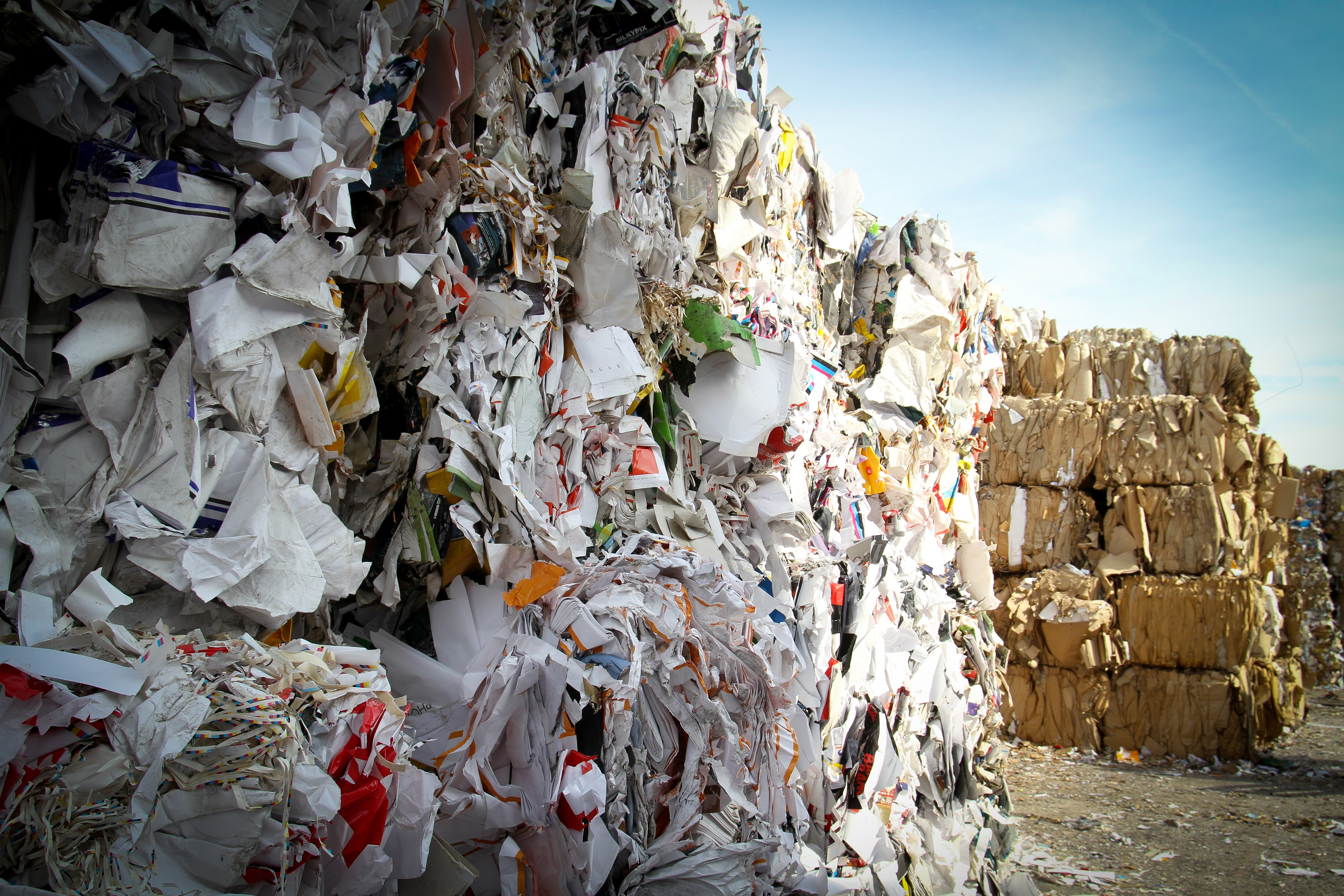 paper and plastic product returns are a major source of waste