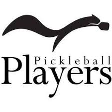 players pickelball