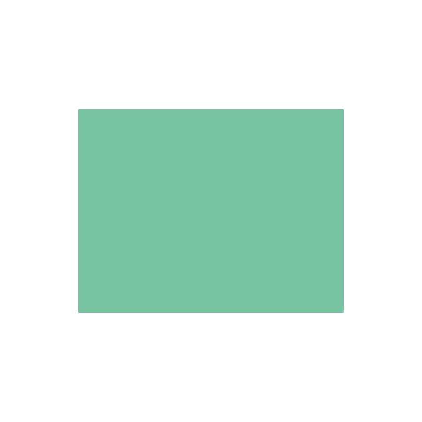 Mint-Line_Camera